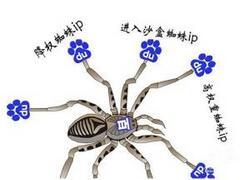 教你分辨真假百度搜索引擎蜘蛛IP