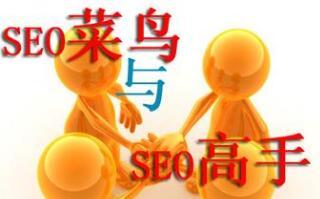seo思维和seo技术,哪个是核心?
